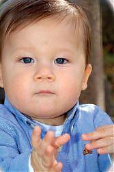 Conférence RAM - Signer avec bébé : un effet de mode ?