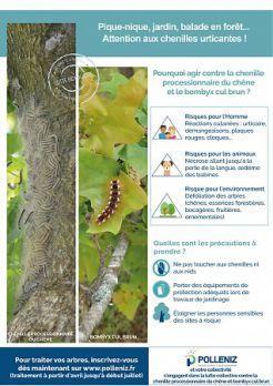 Lutte collective contre la chenille processionnaire du chêne et le Bombyx cul-brun en Pays de la Loire