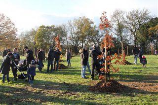 Un enfant, un arbre : nouveau site