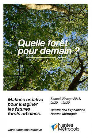 Matinée créative : Quelle forêt pour demain ?