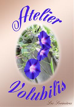 Atelier Volubilis (art floral)