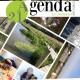 Bilan étape 2013 de l'Agenda 21