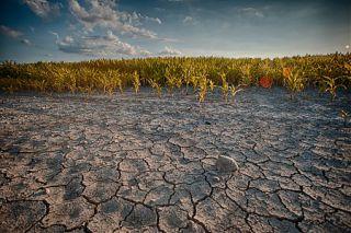 Un arrêté pour lutter contre la sécheresse