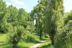 Les espaces verts et naturels